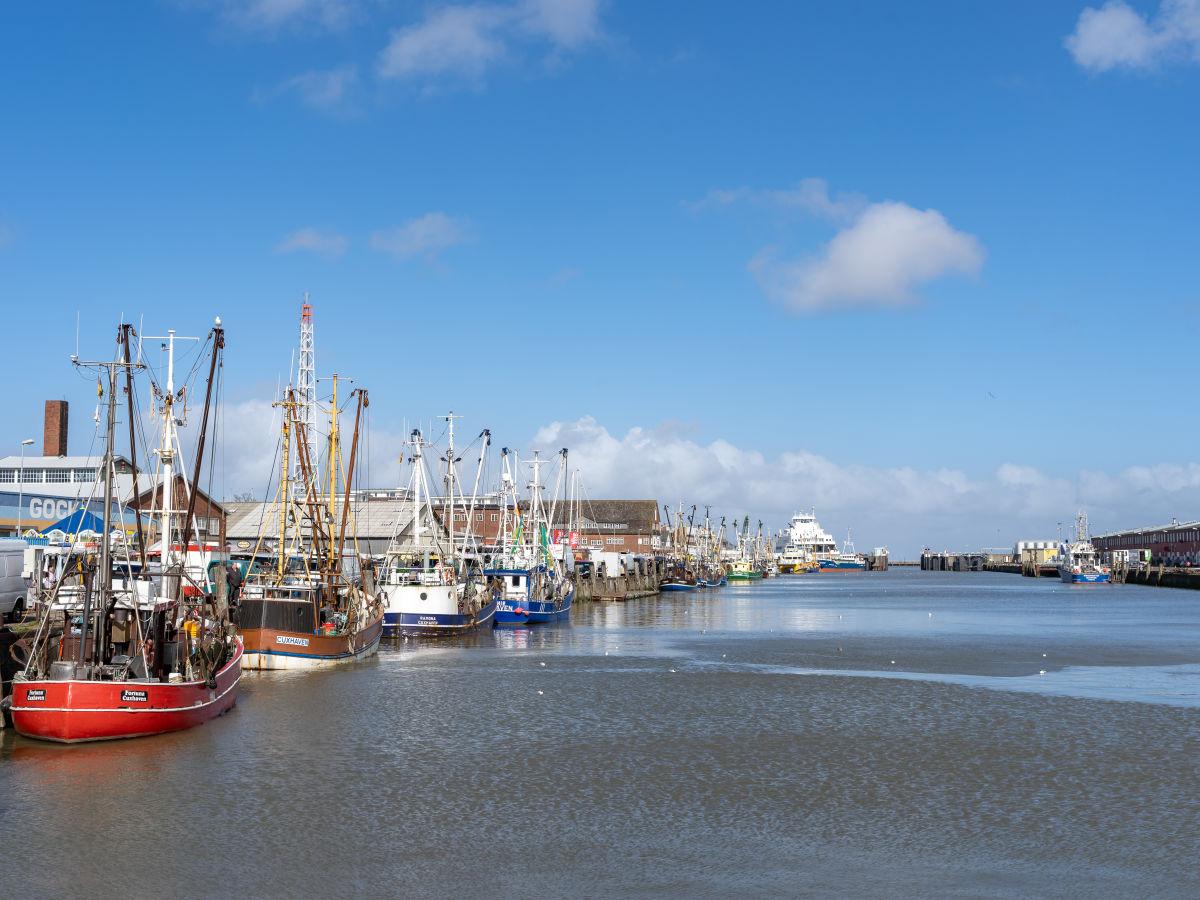 kutterhafen-von-cuxhaven-3